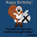 Gladiator Beaver Happy Birthday Ecard 4